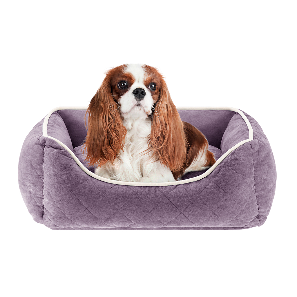 Sleep Philosophy - Keane Quilted Orthopedic Foam Rectangular Cuddler - Purple - 24x34+12