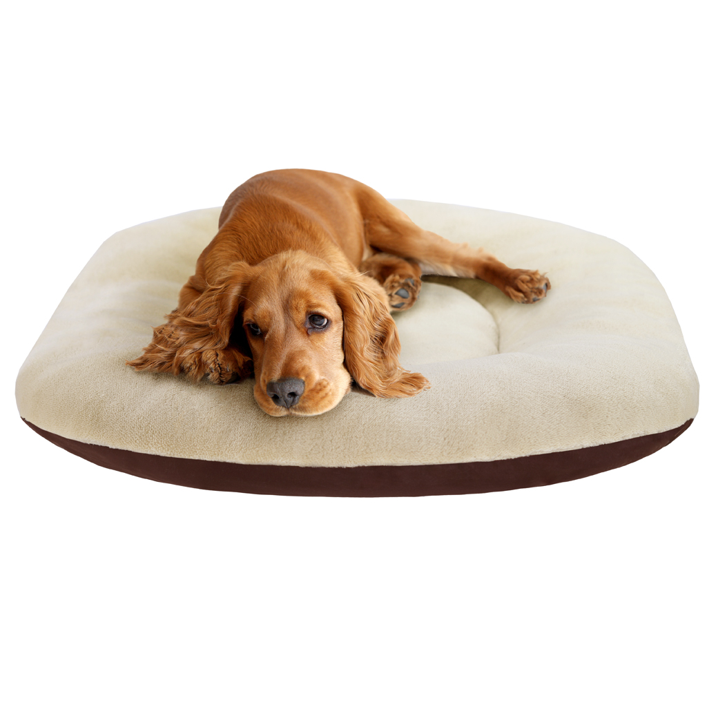 Soft Touch - Oval Cushion Oval Cushion - Brown - See below